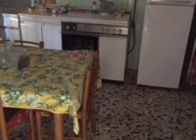 5 Leonello Grossi, Finale Emilia, Modena, Emilia Romagna, Italia 41034, 6 Stanze da Letto Stanze da Letto, ,3 BathroomsBathrooms,Casa singola,Compravendita,Leonello Grossi,1181